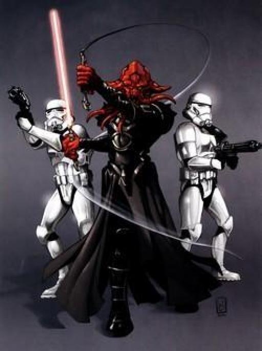 Deux Stormtroopers armés d'ARC-9965.