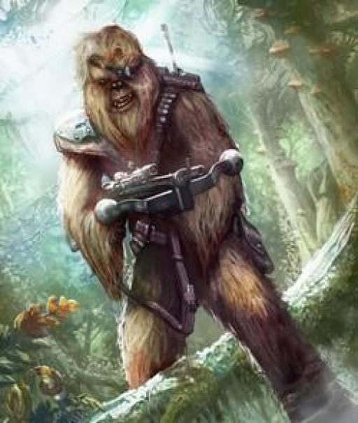 Un guerrier Wookiee.