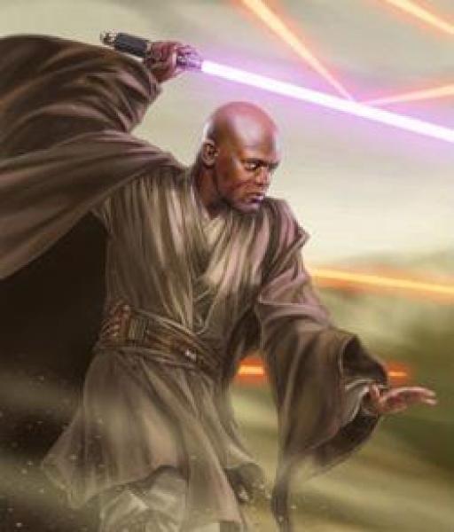 Le Maitre Jedi Mace Windu