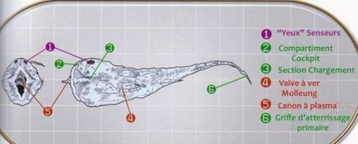 Schéma technique du Yorik-Trema