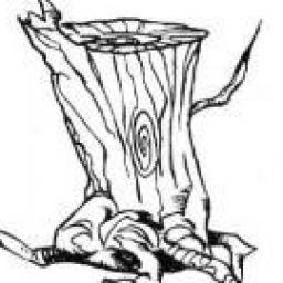 Araignée-arbre Telkadis