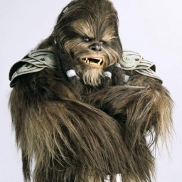 Illustration de Wookiee