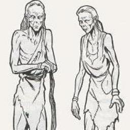 Développement de la Civilisation Sharu