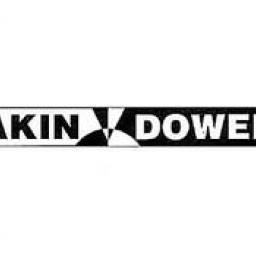 Akin Dower