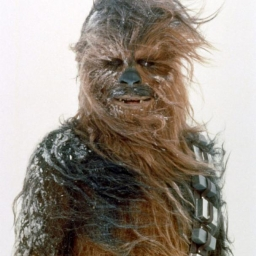 Illustration de Chewbacca