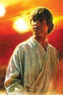 Couverture de Biographie de Luke Skywalker